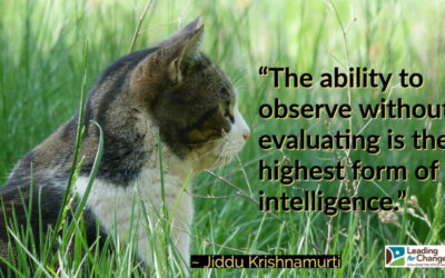 Lead with your observations – not your evaluations